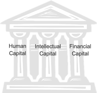 Human Intellectual Financial Capital